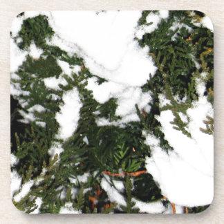 snow.jpg posavaso