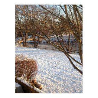 Snow jpg tranquilo tarjeta postal