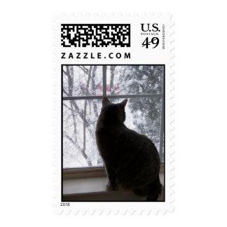 Snow Kitty Postage Stamp