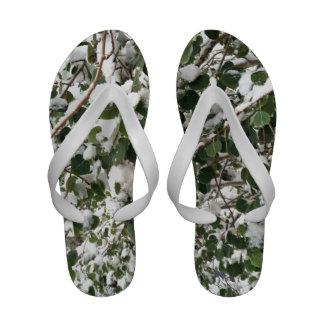 Snow Laden Green Aspen Leaves Sandals