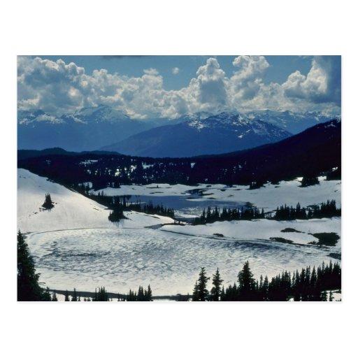 Snow Land Post Card