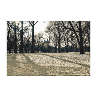 Snow Landscape in Central Park, New York City Gallery Wrapped Canvas