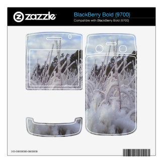 snow landscape decals for BlackBerry
