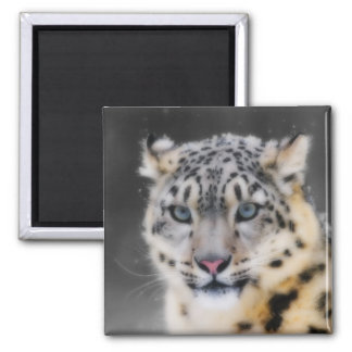 Snow Leopard 2 Inch Square Magnet
