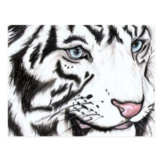 Snow Leopard 2 Post Card