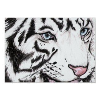Snow Leopard 2 Poster
