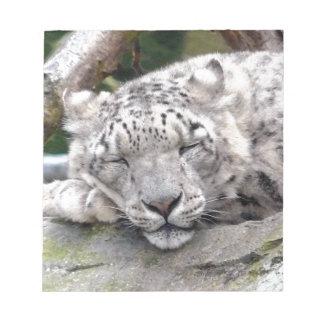 Snow Leopard - beautiful! Memo Pad