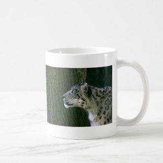 Snow leopard beautiful photo coffe, tea mug
