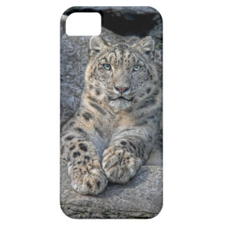 Snow Leopard Beauty (both paws in front) iPhone SE/5/5s Case