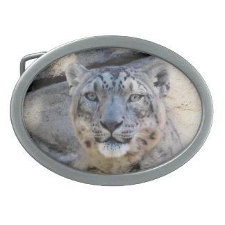 Snow Leopard belt buckle oval