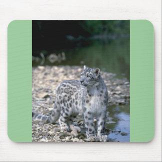 Snow leopard beside river mousepads