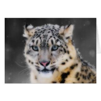 Snow Leopard Cards