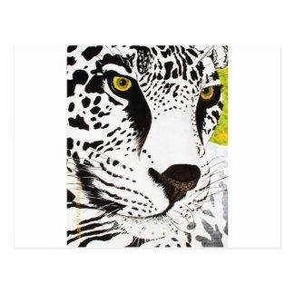 Snow Leopard - Card 3