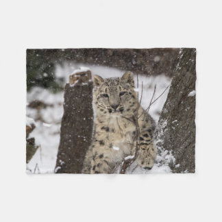 Snow Leopard Cub Fleece Blanket