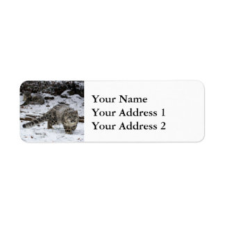 Snow Leopard Cub Label