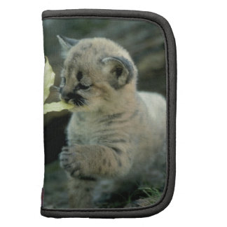Snow Leopard Cub Planner