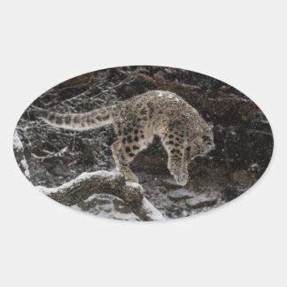 Snow Leopard Cub Pounce Oval Sticker