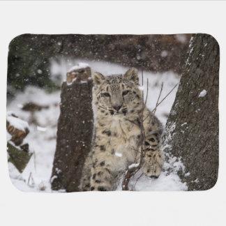 Snow Leopard Cub Receiving Blanket