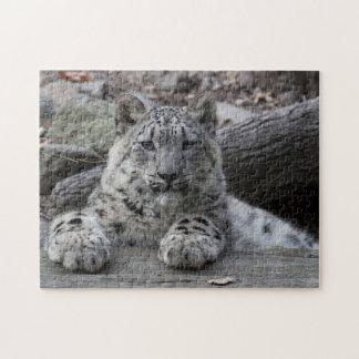 Snow Leopard Cub Sitting Jigsaw Puzzle