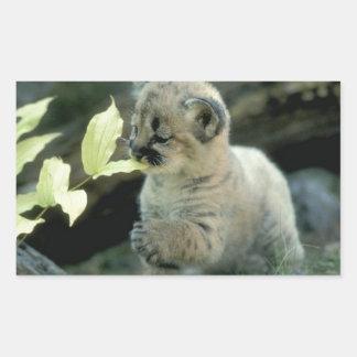Snow Leopard Cub Rectangular Sticker