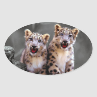 Snow Leopard Cubs Oval Sticker