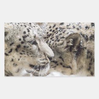 Snow Leopard Cuddle Rectangular Sticker