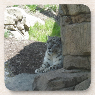 Snow Leopard Drink Coaster