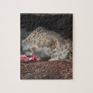 Snow Leopard Eating His Meat Colorful Photo Jigsaw Puzzle