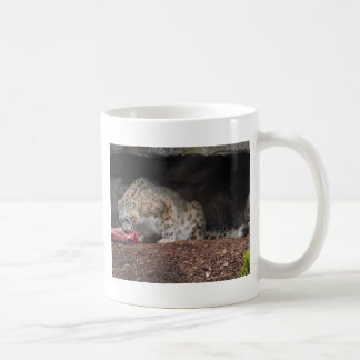 Snow Leopard Eating His Meat Colorful Photo Coffee Mugs