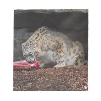 Snow Leopard Eating His Meat Colorful Photo Notepad
