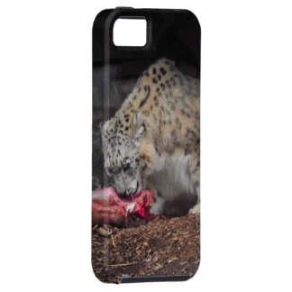 Snow Leopard Eating His Meat Real Photo iPhone SE/5/5s Case