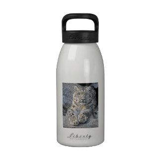 Snow Leopard Following Eyes Water Bottle