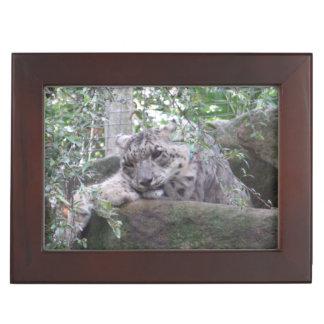 Snow Leopard Keepake Box