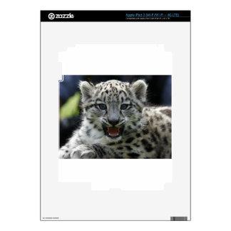 Snow Leopard Kitten iPad 3 Decal