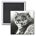 Snow Leopard Magnet