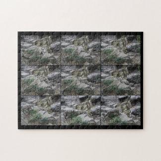 Snow Leopard Pounce Lessons collage puzzle