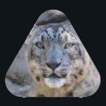 "Snow Leopard speaker<br><div class=""desc"">Snow Leopard speaker</div>"