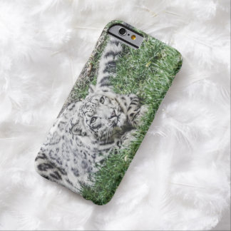Snow Leopard Stare Barely There iPhone 6 Case
