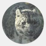 Snow Leopard Stickers