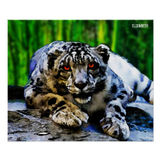 Snow Leopard With Red Eyes Drawing Poster