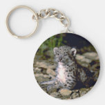 Snow leopard, young cub keychain