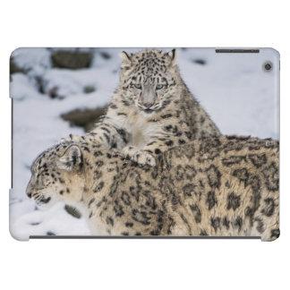 Snow Leopards: iPad Air Cases