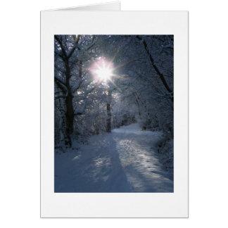 Snow & Light Greeting Card