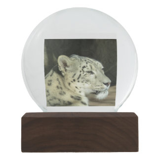Snow Lion Leopard Snow Globe