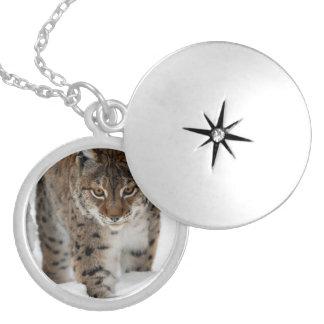 Snow Lynx Round Locket Necklace
