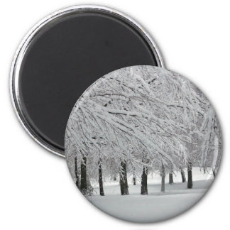 snow magnet