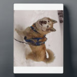 "Snow Max w/ Easel (5x7) Plaque<br><div class=""desc"">5.x7 Easel with happy Max in snowfall.</div>"