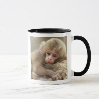 Snow Monkey Baby, Jigokudani, Nagano, Japan 2 Mug