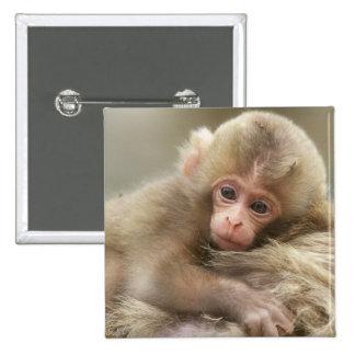 Snow Monkey Baby, Jigokudani, Nagano, Japan 2 Pinback Button