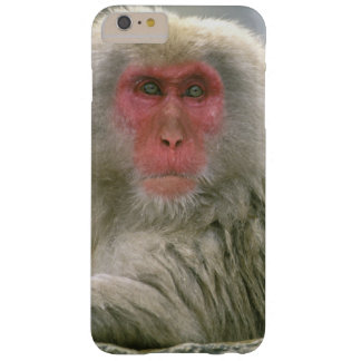 Snow Monkey Couple, Japanese Macaque, Barely There iPhone 6 Plus Case